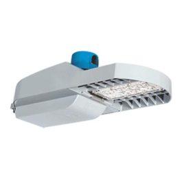 TRIBORO® LED Roadway Light