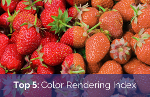 Top 5: Color Rendering Index (CRI)