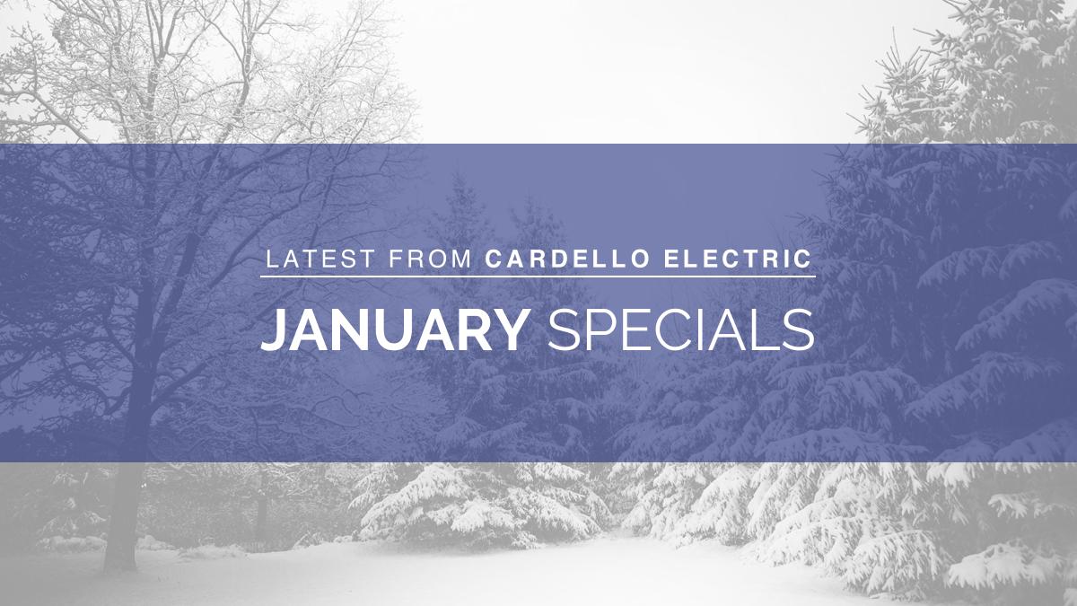 January 2021 Specials