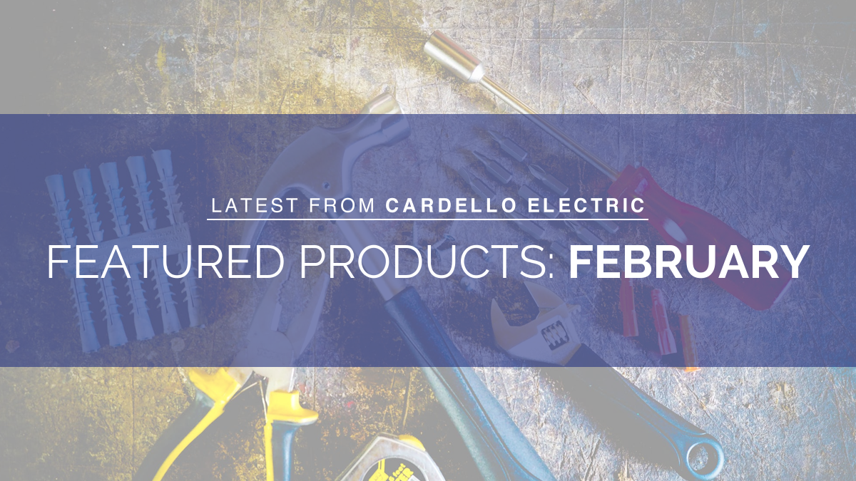 Featured Products February