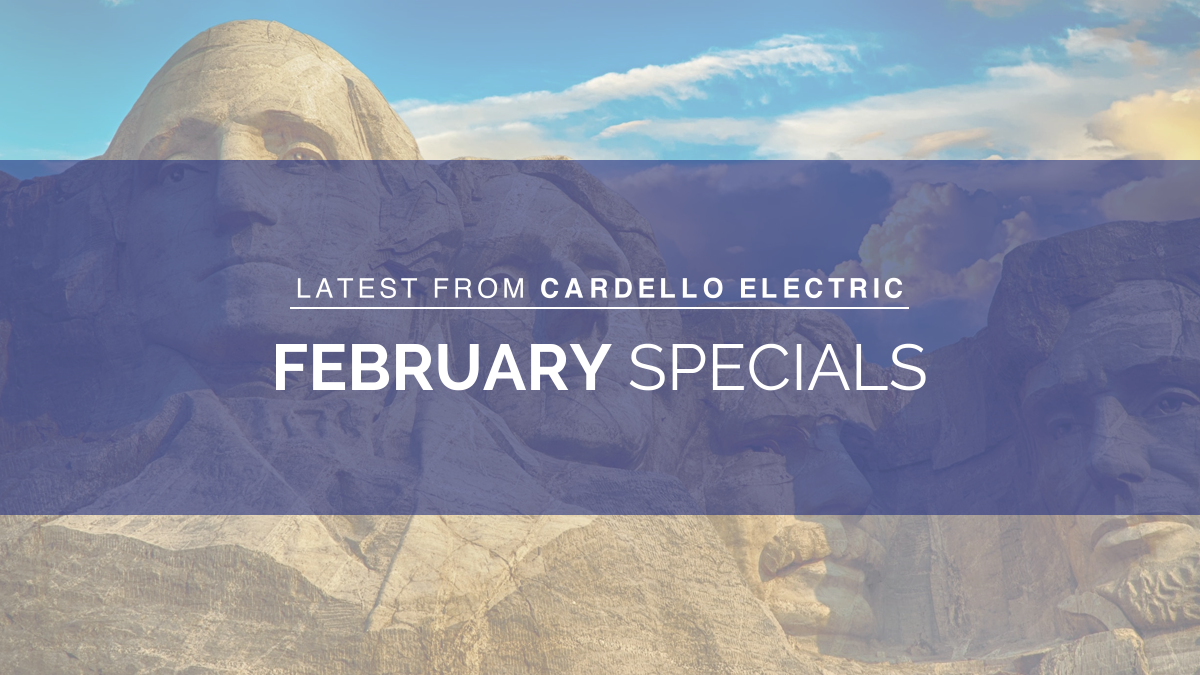february specials president's day
